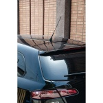 Car Plus Antenne 16V 30 cm schwarz
